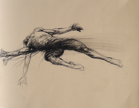 Zingaro, L'envol - acrobate (56 x 44 cm)