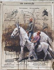 Emmanuel Michel peinture sur carte Zingaro les ongulés