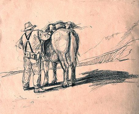 Seller la mule (50 x 65 cm)