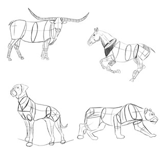 Animal Gestures-Geometric Shapes