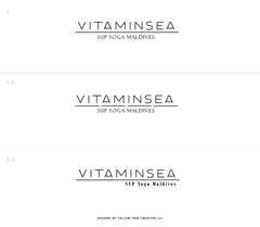 VitaminSEALogoConcepts-01.jpg