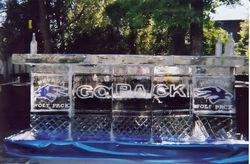 Go Pack 10ft ice bar