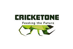 cricket-one-logo-hive-life.jpg