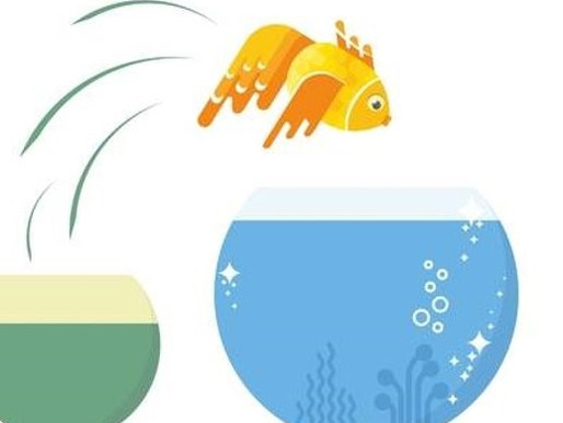 Cleaning your fishbowl - leadership habits that shine