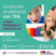 """""""Conductas en personas con TEA: Cómo ent"""