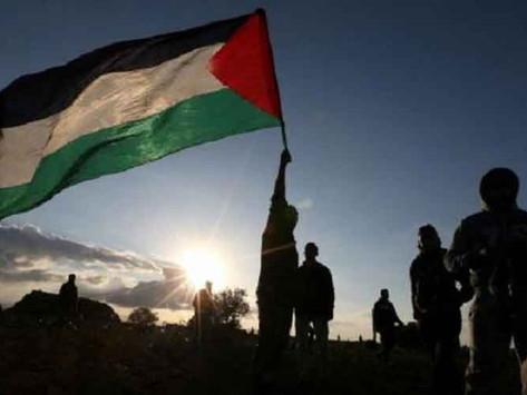 ¡Todos somos palestinos!