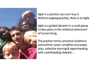 You Can't Buy It: Agile