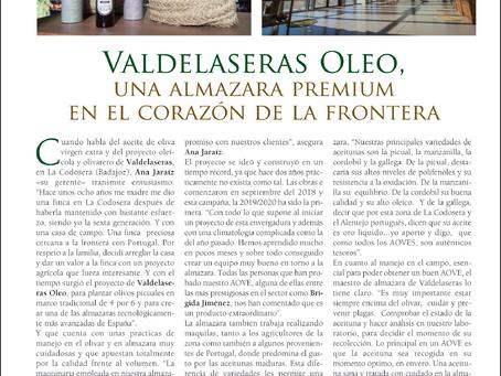 Somos noticia: Reportaje Olivar de Extremadura