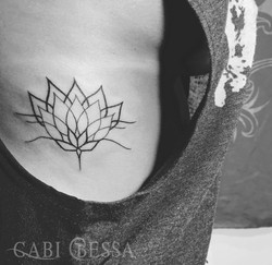 Flor de lotus | Lotus Flower