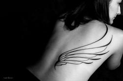 Asa | Wings