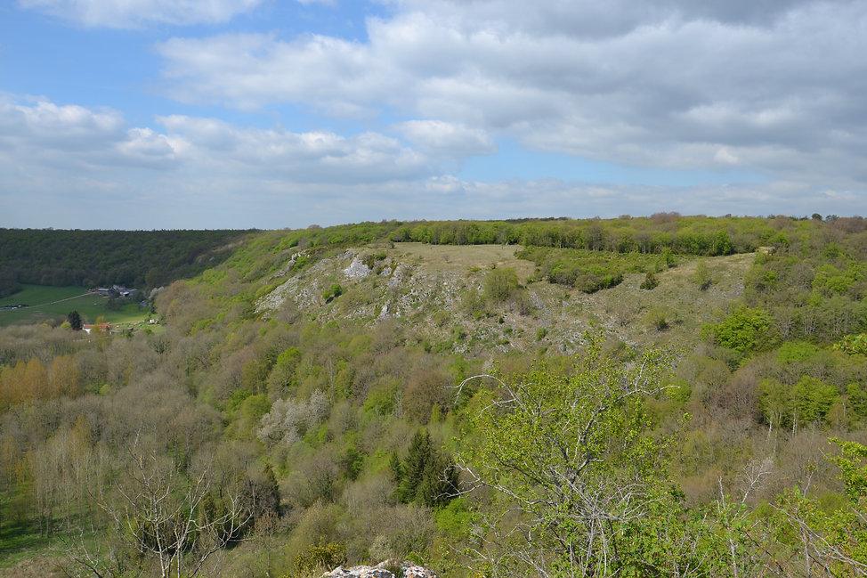Montagne-aux-buis (2).JPG