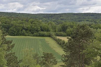 paysage calestienne 3.jpg