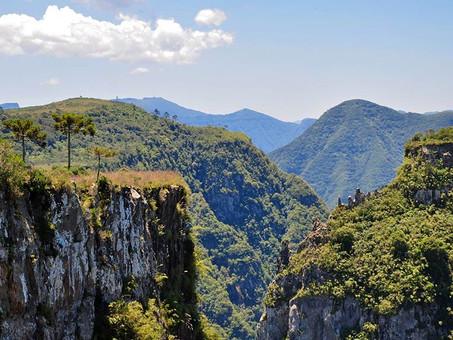 Senado debate redução da área do Parque Nacional de São Joaquim (SC)
