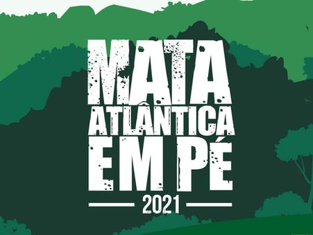 Começa em Santa Catarina a Operação Mata Atlântica em Pé, que alcança outros 16 estados