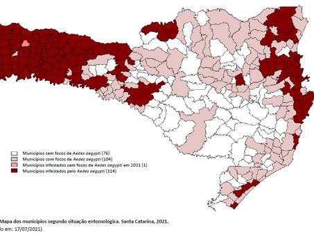 INFESTAÇÃO: Camboriú e Navegantes considerados em situação de epidemia de dengue