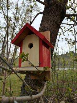 cedar bird house painted hot red