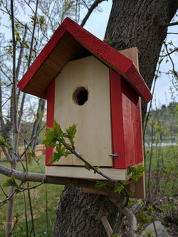 cedar birdhouse 2 painted hot red