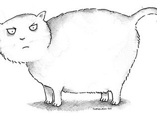 Votre chat est-il en surpoids? Si oui, comment faire?