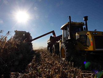 Produtor rural deve ter atenção necessária na colheita da lavoura