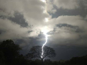 Excesso de chuvas causa prejuízo de R$ 20 mi na agricultura