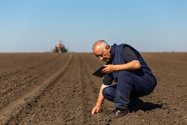 Cerca de 1,3 mil lavouras que tiveram operações de seguro rural contratadas com o apoio do governo f
