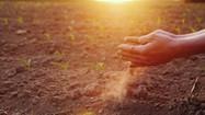 Garantia-Safra autoriza pagamento para mais de 88 mil agricultores familiares