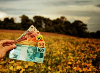FAEP propõe ajustes ao programa estadual de seguro rural