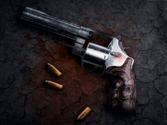 MT já registrou mais de 240 casos de furto de gado