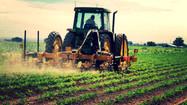 Veja cinco coisas que podem ajudar o agronegócio a avançar ainda mais