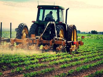 Moradores de São Miguel Arcanjo investem em seguros para máquinas agrícolas após roubos