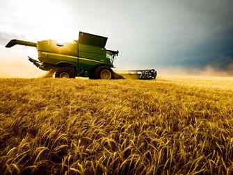Necessidade de Seguro Rural aumentou nos últimos anos
