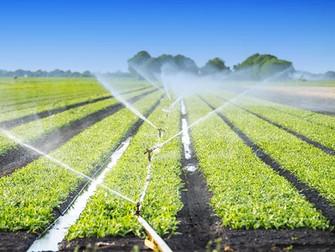 [Artículo] Gestión de riesgos con el seguro agrícola y los sistemas de riego