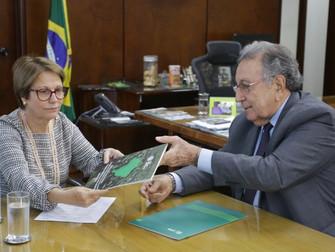 Subsídio direto ao produtor está nas propostas da CNA para o seguro rural 2019/2020