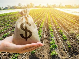 Contratações do crédito rural da safra 2019/2020 fecharam em R$ 225 bilhões