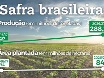 Safra brasileira de grãos deve alcançar 288,2 milhões de toneladas em 10 anos