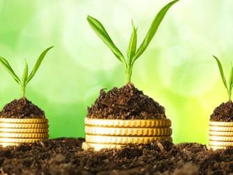 Governo estabelece seguro rural como despesa obrigatória