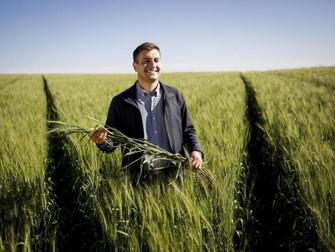 Debate visa a implementação e regulamentação do seguro agrícola