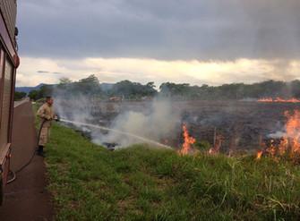 Geada seca vegetação e favorece incêndios florestais