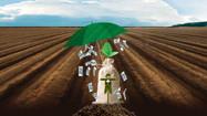 O que está em jogo com o corte nos recursos de subvenção do Plano Safra?