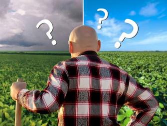 4 dicas para monitorar o tempo e tomar boas decisões na fazenda