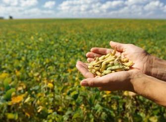 Seguro Rural tem apenas metade do recurso necessário, disponibilizado em novo plano safra