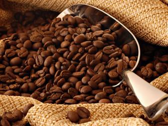 Mapa promove monitor do seguro agrícola de café no dia 11 de setembro