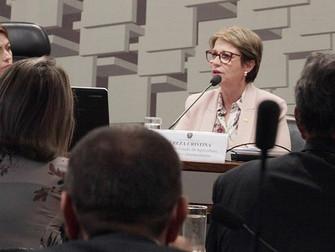 No Senado, Tereza Cristina diz que tentará destinar R$ 1 bi ao seguro rural no Plano Agrícola e Pecu