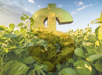 Governo de SP libera R$ 26 milhões para o agronegócio