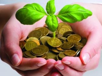 CNA defende novos mecanismos para aprimorar o modelo de seguro rural