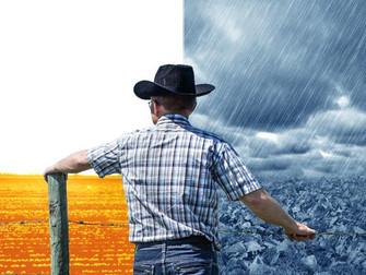 Zoneamento Agrícola de Risco Climático evita perda anual de R$ 3,6 bilhões