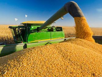 Seguro rural será discutido em evento sobre agronegócio em Campinas/SP