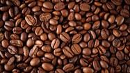 Cafeicultores afetados por geadas precisam de planejamento