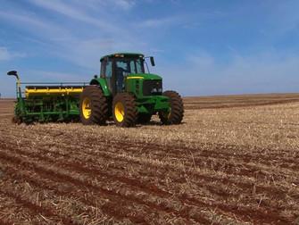 Três safras no mesmo ano agrícola melhoram rentabilidade em até 20%