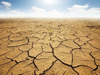 Seca é maior desastre ambiental do país e ocorre em todo o território, diz IBGE